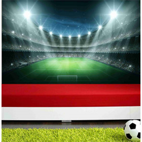 Adesivo Poster Campo de Futebol