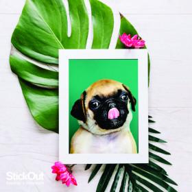 Poster Pug Verde